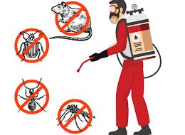 Eco Safe Pest Control Perth2