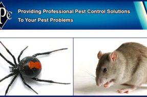 Joondalup Pest Control
