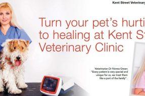 Kent Street Veterinary Clinic