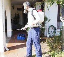 Pesti Pest Control Perth2