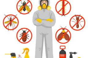 Tom's Pest Control2
