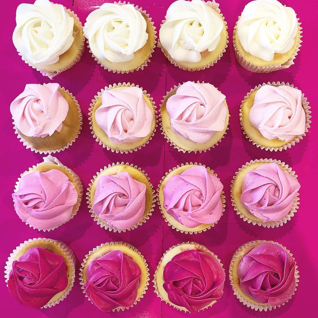 Cupcake Occasion